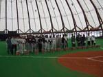 baseball10-01.jpg