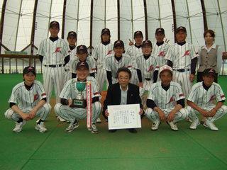 baseball2011.jpg
